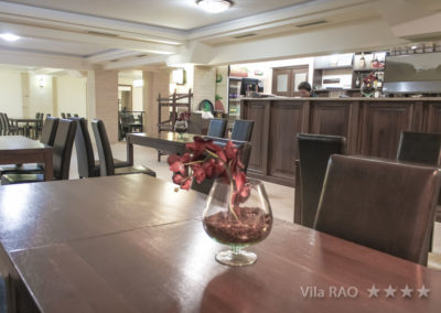 Vila_Rao-33